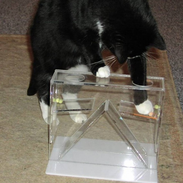Bewegungstrainer transparent (Therapiespielzeug)