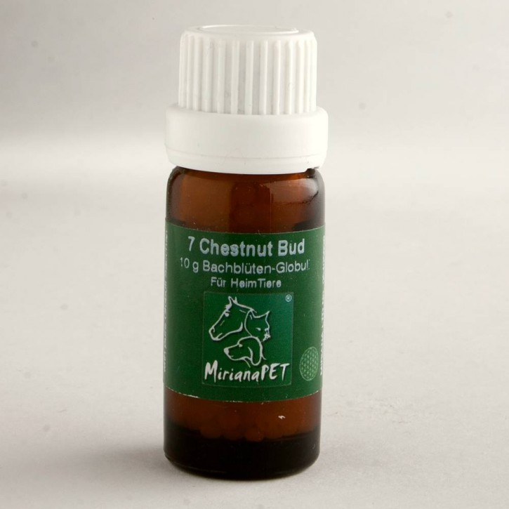 Miriana Pet Chestnut Bud Globuli No.7