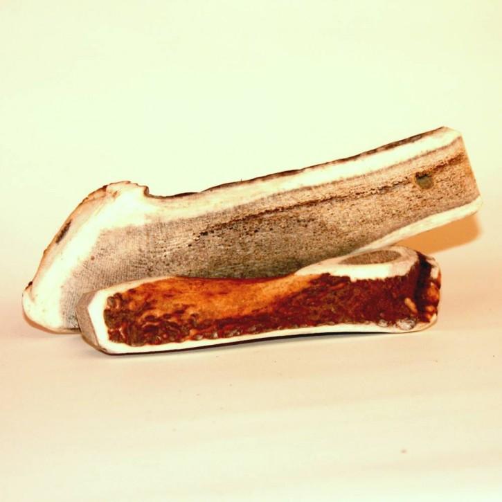 TBT Kauknochen aus Rothirschgeweihstangen