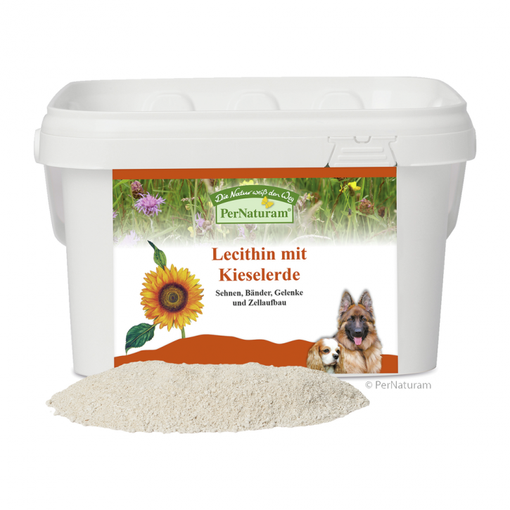 PerNaturam Lecithin mit Kieselerde 1 kg