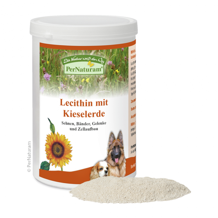 PerNaturam Lecithin mit Kieselerde 500 g