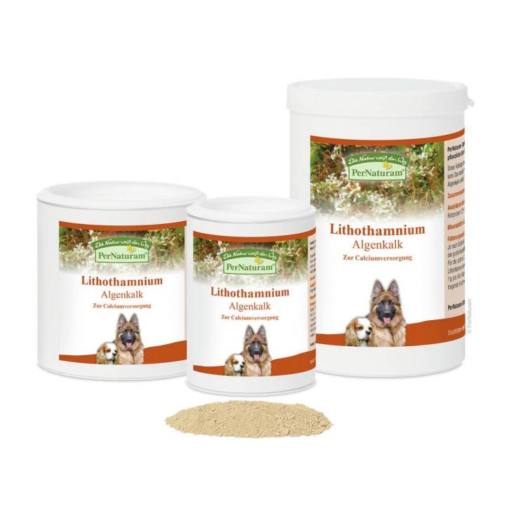 PerNaturam Lithothamnium Hund