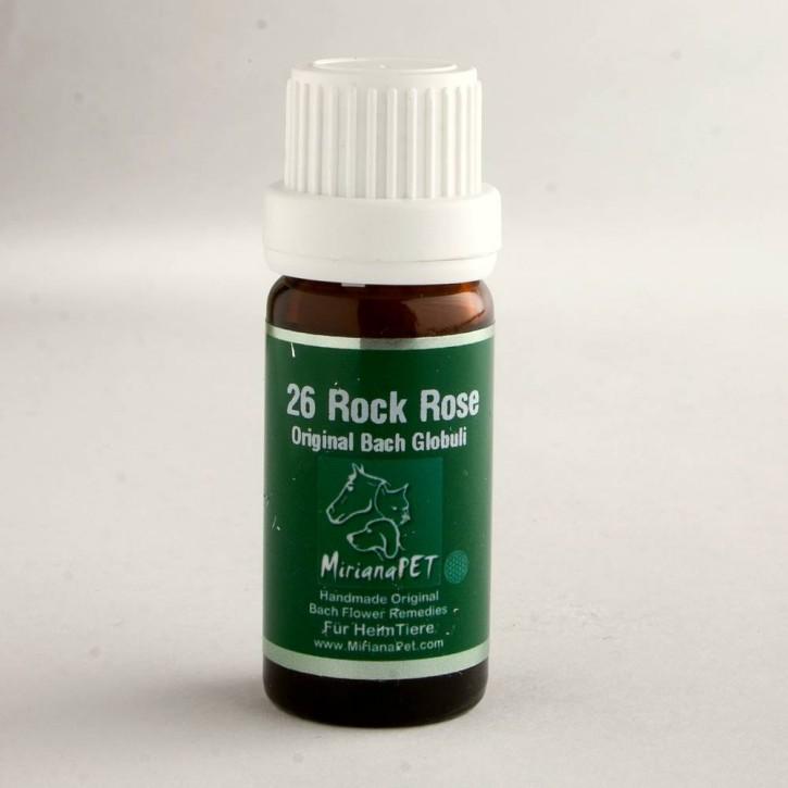 Miriana Pet Rock Rose Globuli No.26