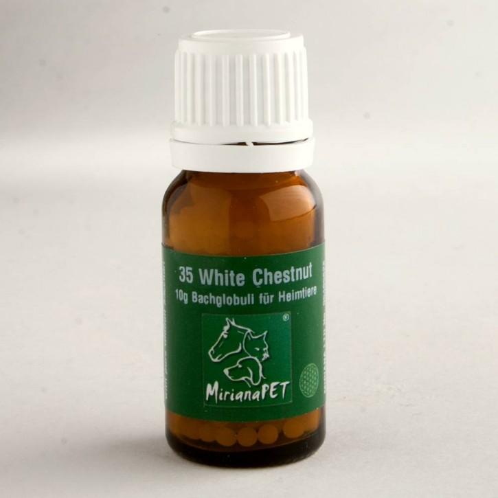 Miriana Pet White Chestnut Globuli No.35